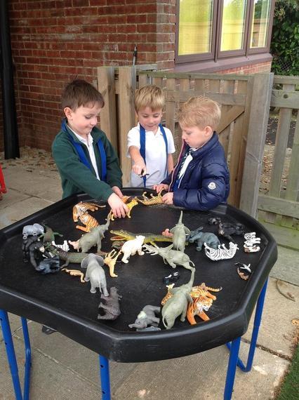 Ocelot Class discovering dinosaurs