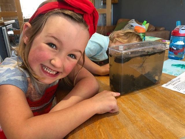 IC (Lynx) found some tadpoles