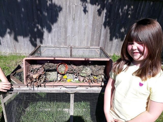 PW (Lynx) with her fantastic bug hotel