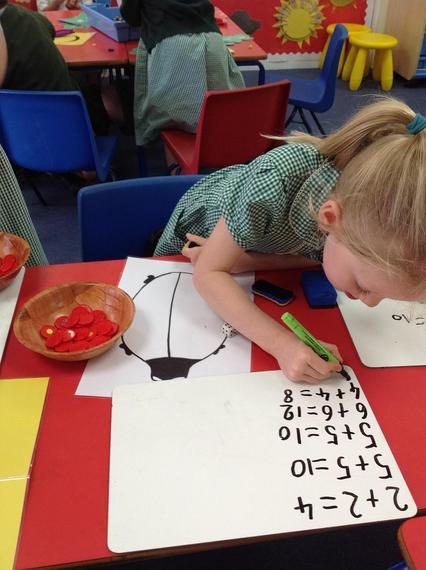 How many spots can a ladybird have?