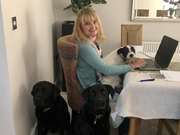 Mrs Clayton busy working with her doggy bodyguards