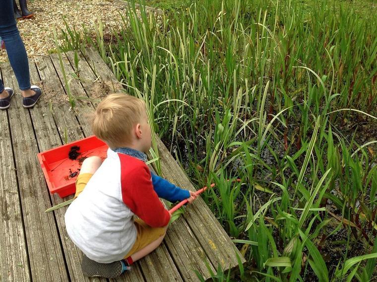 Ocelot class enjoy some pond dipping