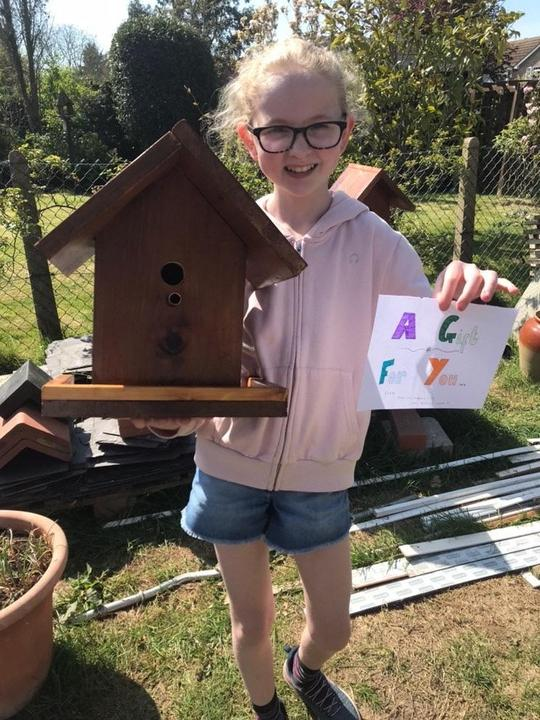 Bird boxes for neighbours.