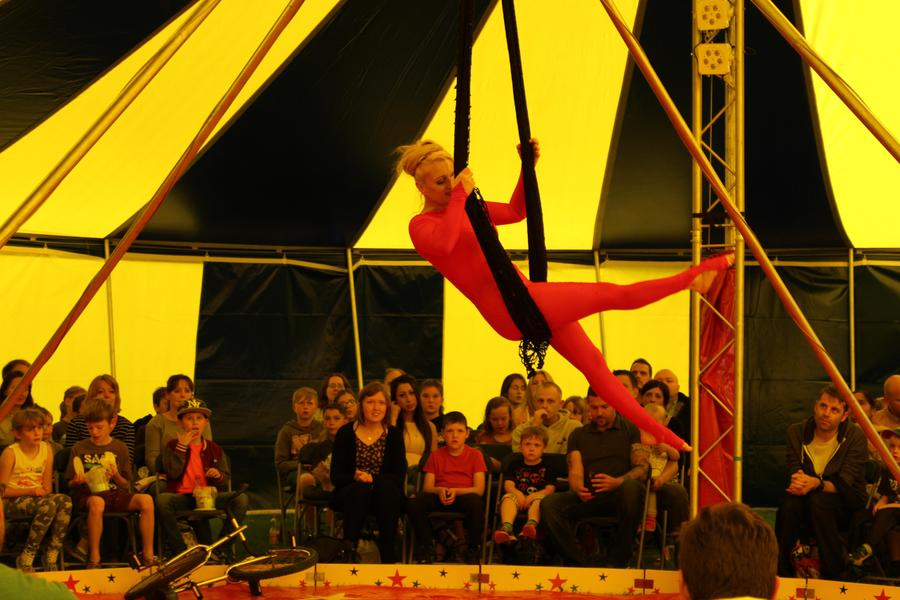The Pop-Up Circus