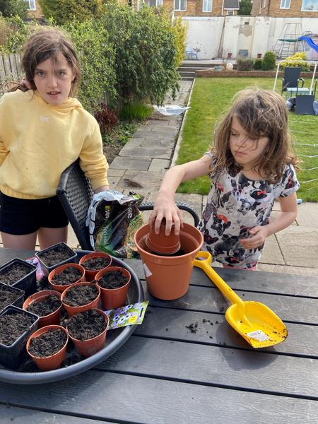 Charlotte has been planting...