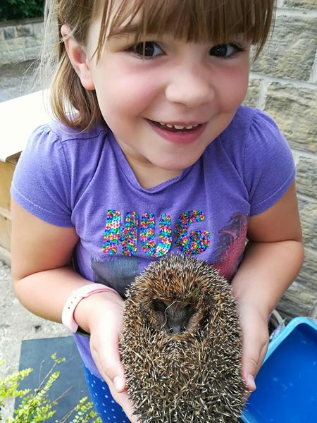 Wow! Erin rescued this hedgehog. Amazing! :)