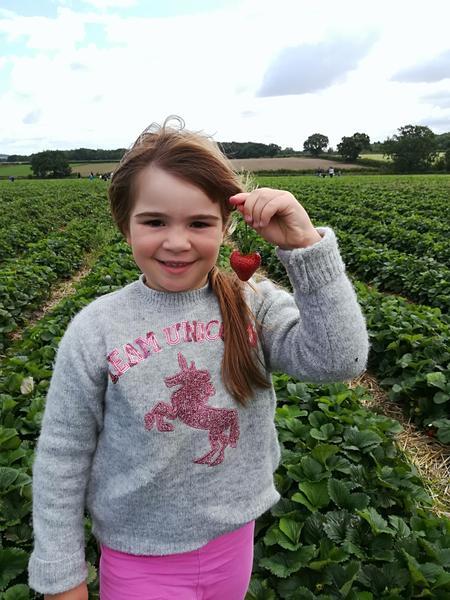 Erin went strawberry picking. Yum yum!!
