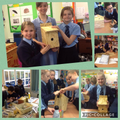 Year 5/6 Class 4 built bird boxes.