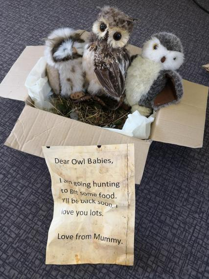 The owl babies visited us! Their mummy had left them a note ...