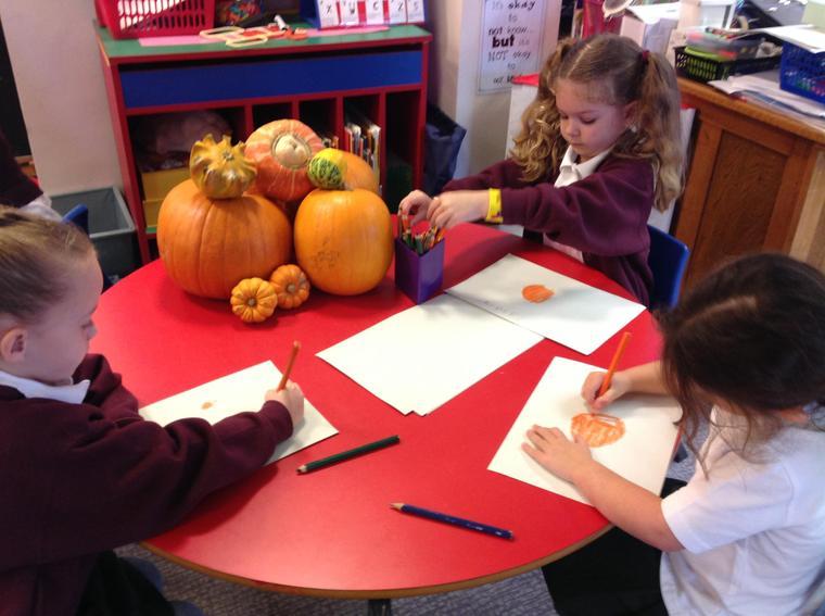 Drawing pumpkins