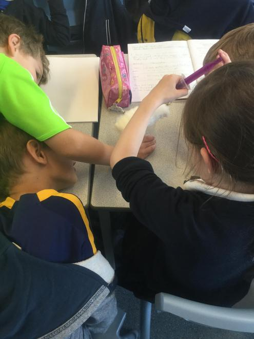 Y2 - Materials - Comparative Test - Which material is most suitable to clean a spill?