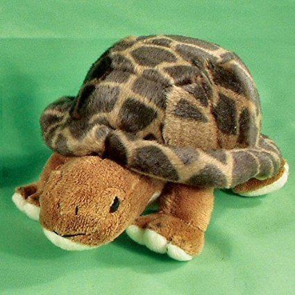 Resilience, the Tortoise
