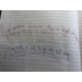 Emer's poem