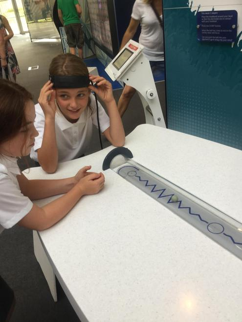 Y5 - Brain Power at the Winchester Science Centre