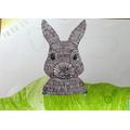 Emer's Easter bunny