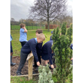 mindful walk through our sensory garden