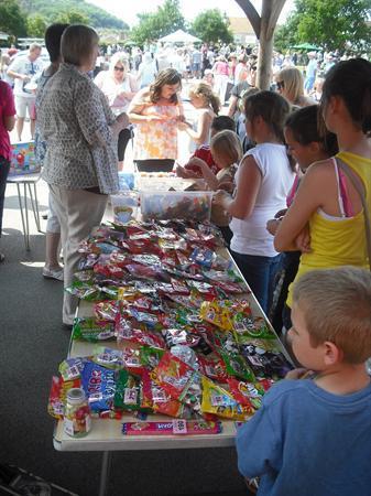 Summer Fair 6