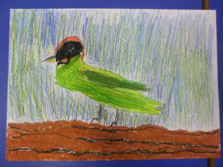 Green woodpecker by Freyda