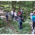 Forest School 'survival week'