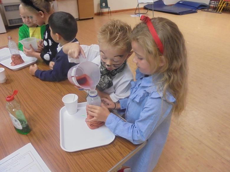 Year 1 and 2 Experimenting in Science
