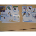 We can sort forces into push and pull.