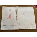 The front and back covers of Sophia's book.