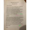 Mount Everest Facts by Szymon
