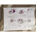 Jesse's story map