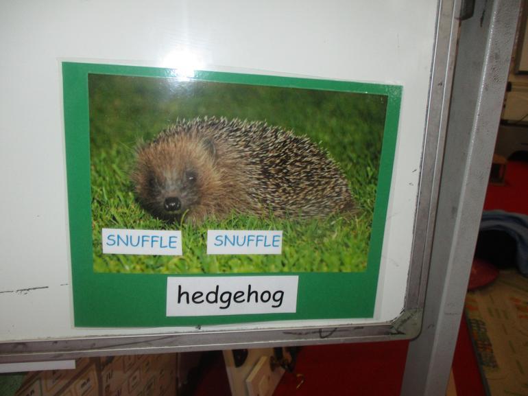 The Hedgehog went SNUFFLE SNUFFLE