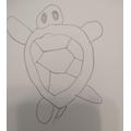Olivia's tortoise drawing