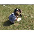 Searching for Maths answers... on the field!