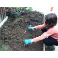Dibbing holes to plant the leeks.