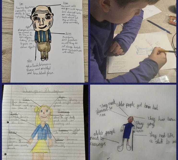 In science we looked at the changes in old age!