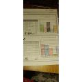 Scarlett's bar chart