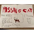 Hanna's missing cat poster