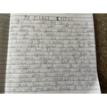 Great diary entry Hanna