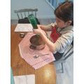 Rana's experiment