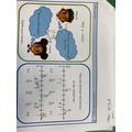 Elliot - Fractions as decimals