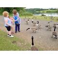 Hardwick Park with Gran