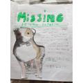 Mason's missing dog poster