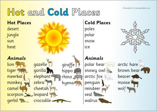 Summer 1 - Hot and Cold Places - Geography Topic