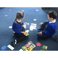 We practiced our knowledge of 'Animals' by sorting animals into groups.