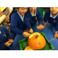 We all helped to scoop out the pumpkin