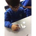 Investigating Fractions