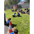 Observing plants in our local area.
