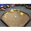 We tested different materials for the pigs house