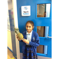 Pineapple of Bravery for public speaking