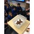 We made boats for the Gingerbread Man