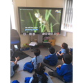 Learning about the frog life-cycle