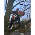 That's all we need!  Caretaker stuck in tree.